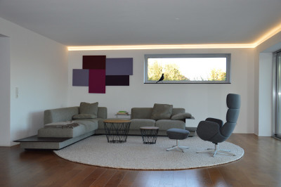 Akustik-Paneel Schall-Absorber als Designelement 50 x 100...