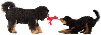 Laboni Toys - Hugo Hummer