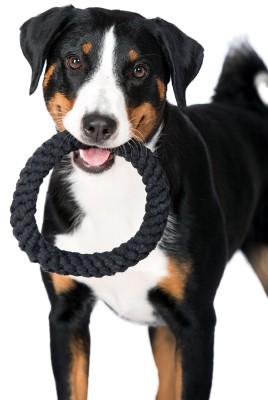 Laboni Toys - Ringo Ring